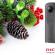 Seçili Ricoh Kamera Modellerinde Özel Yeni Yıl Fırsatı!